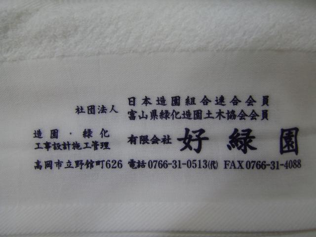 P5300476.jpg